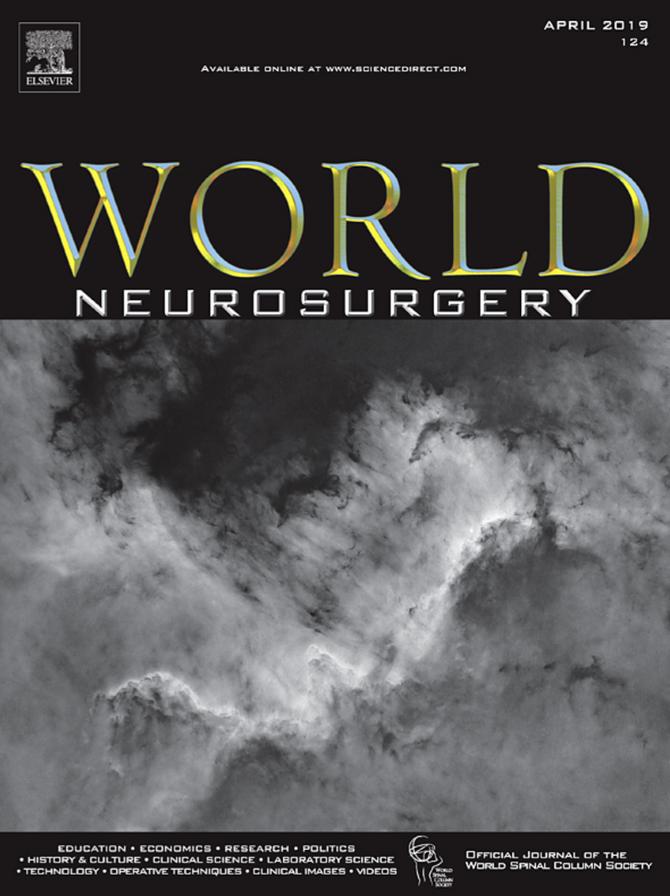 "Again on the cover of ""World Neurosurgery"" - The Cygnus Wall"