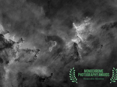 Double Success!  - Monochrome Photography Awards 2018