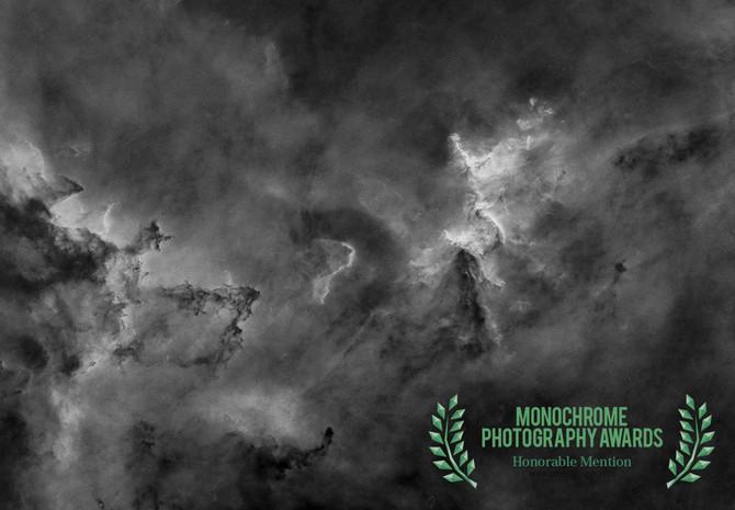 Double Success!  - Monochrome Photography Awards 2018