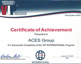 VIP International Certificate.jpg