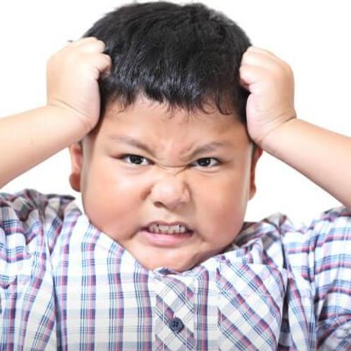 Understanding Challenging Behaviors