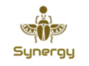 Synergy%20Logo_edited.jpg