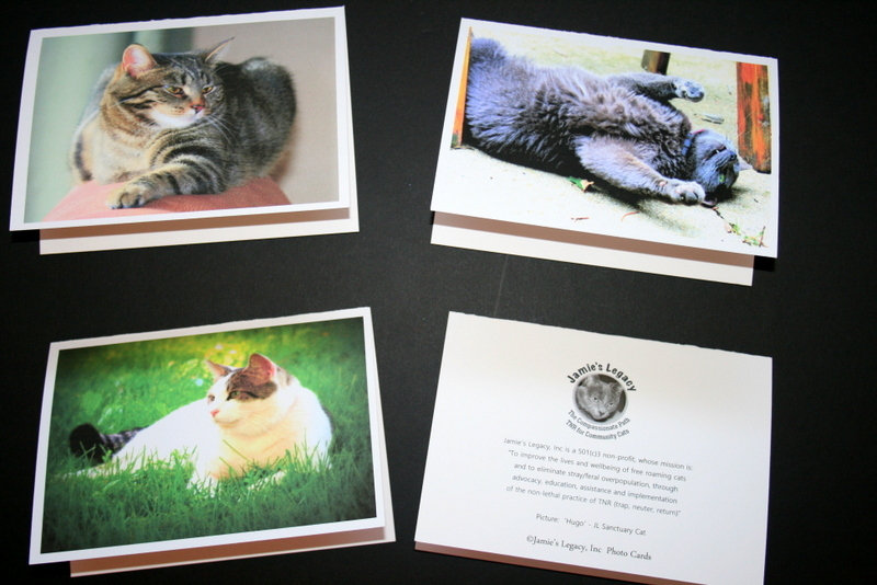 Example:  Front of Cards