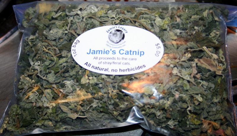 Jamie's Legacy Catnip
