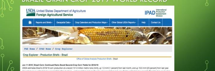 Brazil Grain Crop Record