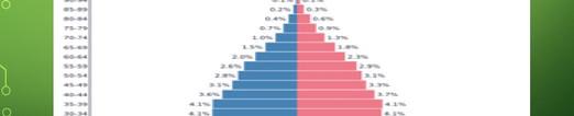 Brazil Population Pyramid