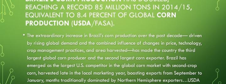 Brazil Corn Production