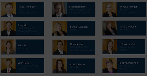 Meet the Torrey Partners Team