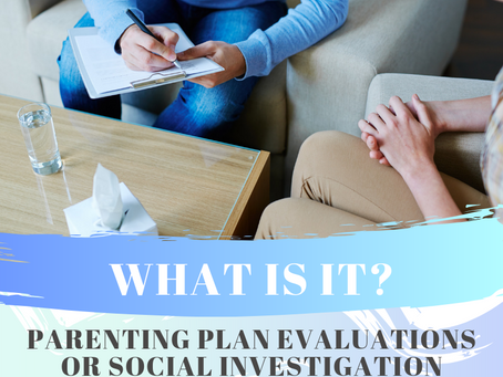 Parenting Plan Evaluations/Social Investigation