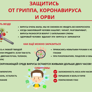 кар1.png
