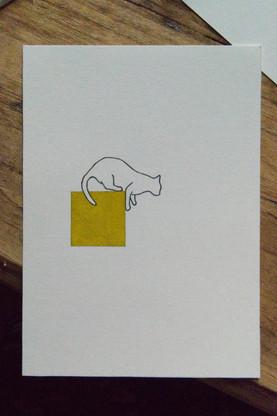 white cat with yellow box.jpg