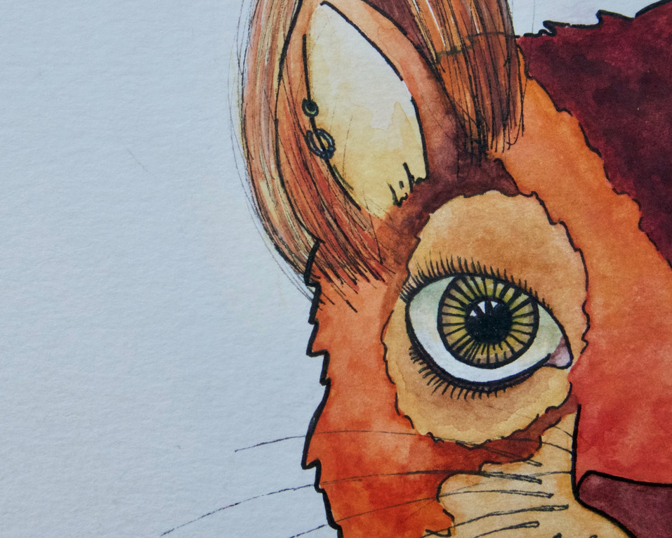 red squirrel detail 1