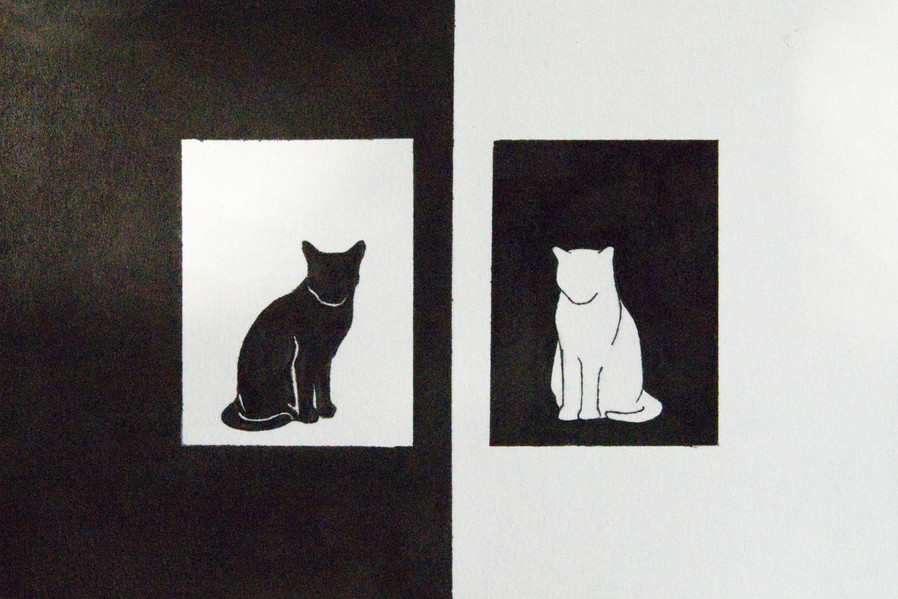 white cat black cat.jpg