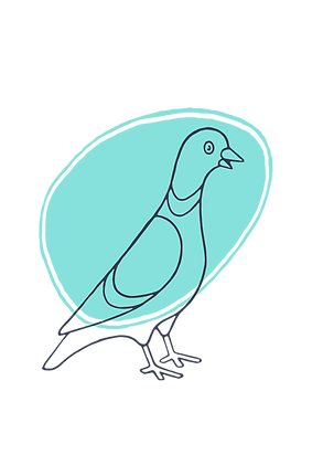 happy pigeon 2.png