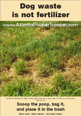 Dog poop is NOT a good fertilizer