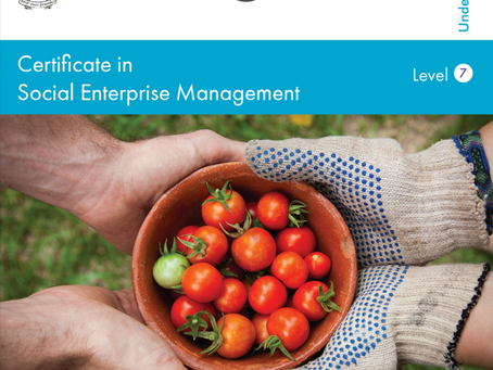 Level 7 Certificate in Social Enterprise Management from WIT