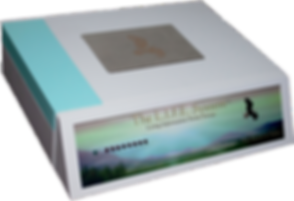 livesystem1-1400x955.png