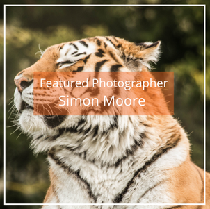 Simon Moore: Featured Photographer