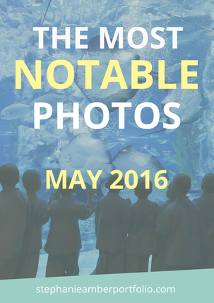 The Most Notable Photos From May 2016
