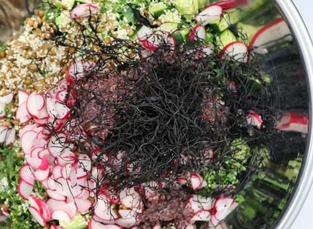 Bulk prep lunch : Lentil + Seaweed Salad