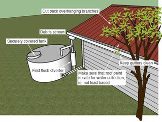 Simple steps to reduce rainwater contamination