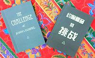 book - challenge of john's gospel.jpg