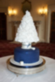 Wedding Cake in the style of a Tree created by Cakes by Joti