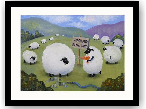 A Little bit of 'Ewe' time...