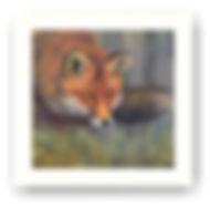 the stalking fox.jpg