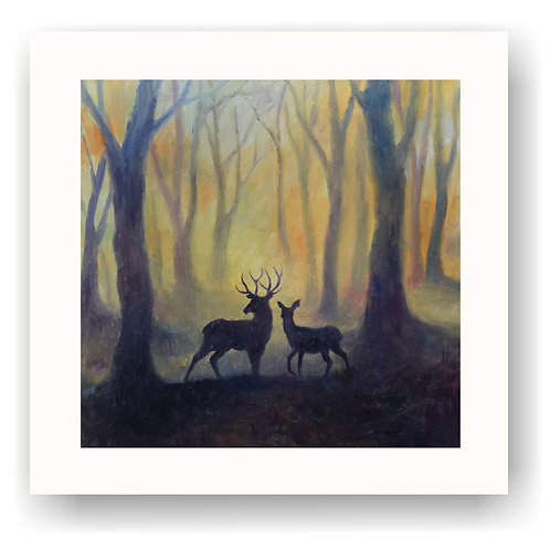 Stag and Doe in Woodland