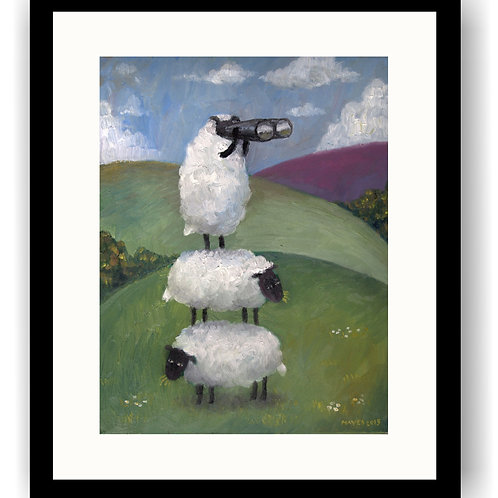 Sheepwatch