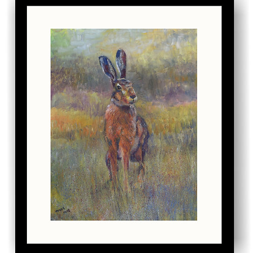 Hare in early Spring