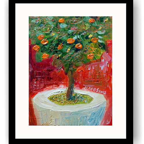 Little Orange Tree