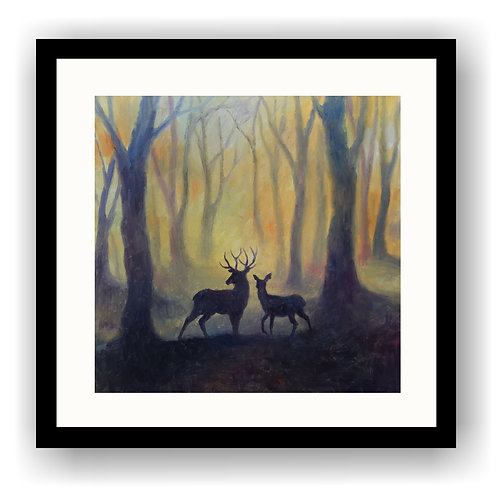 Stag & Doe in Woodland