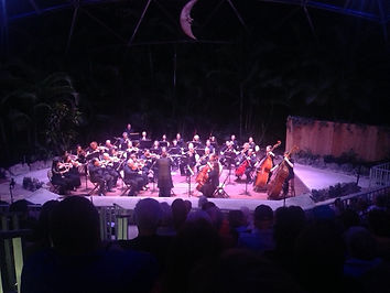 Orchestra Miami performing at Pinecrest Gardens