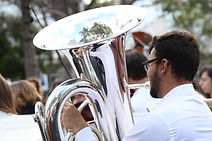 Tuba player. Palm Trees Reflected in a Tuba