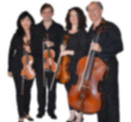 Image of the Delray String Quartet