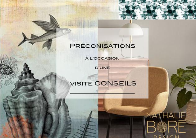 Préconisation visite conseils
