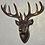 Thumbnail: Deer Head