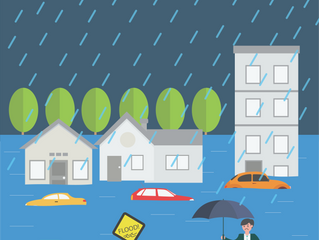Almost 10 thousand cars damaged in last week's flood!  Does you insurance have you covered?