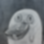 icon_watanabe.png