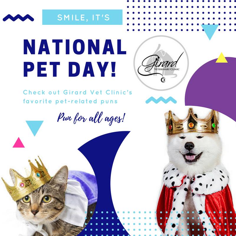 National Pet Day Puns
