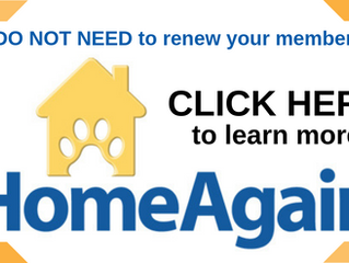 "Homeagain Microchip ""Membership"" Information"