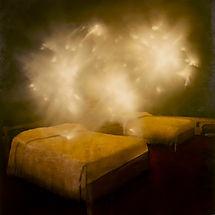 Jarik Jongman-'Phenomena' (5)  100 x 100 cm. 2009, First Prize National Open Art Competition 2010