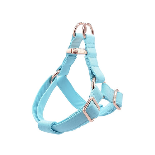 Tiffany Blue Harness