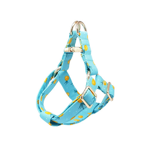Pine Dapple Harness