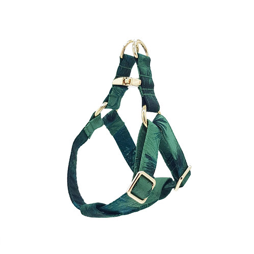 Daintree Rainforest Harness