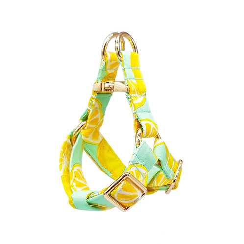 Lemony Burst Harness