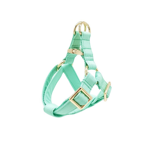 Sage Green Harness