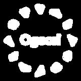 ogoori-logo-hvit.png